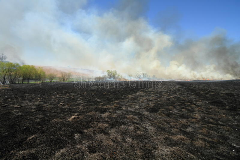 Download Prairie Fire stock image. Image of disaster, burn, agriculture - 17299229