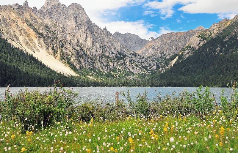 Prairie full of flowers ,High Mountain and Lake Cuopu. Batang country Tibet royalty free stock photos