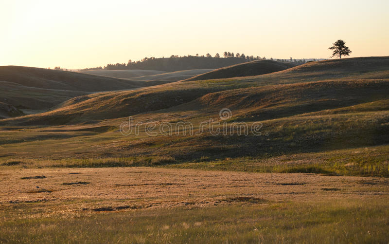 Download Prairie hills stock photo. Image of dakota, people, nature - 21536636