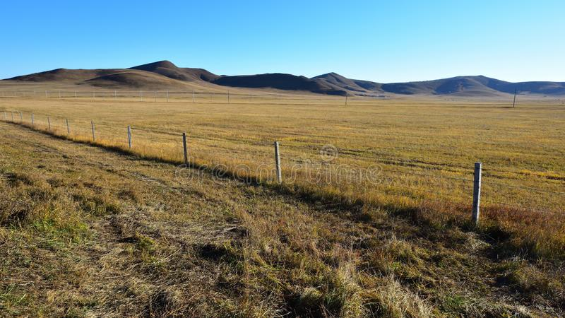 The prairie of Inner Mongolia in China royalty free stock image