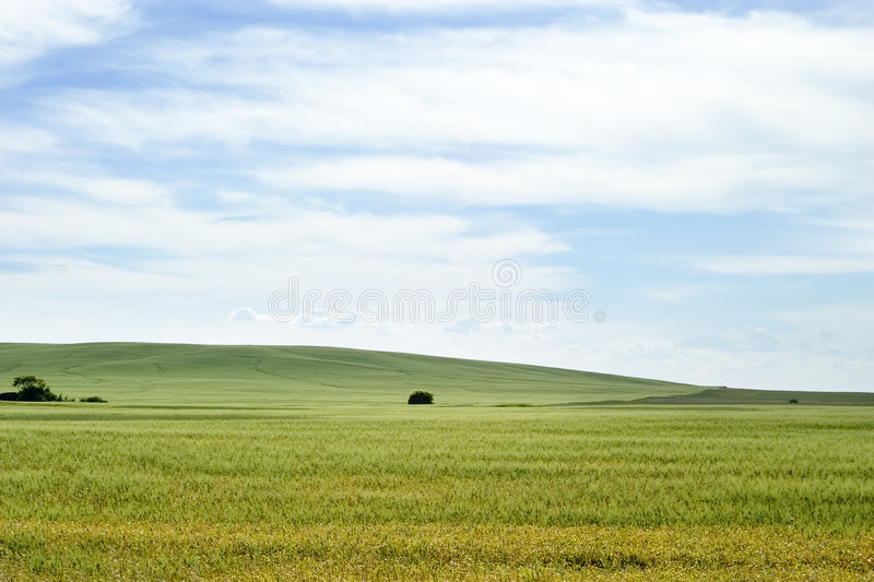 Download Prairie Landscape stock photo. Image of outdoor, north - 457080