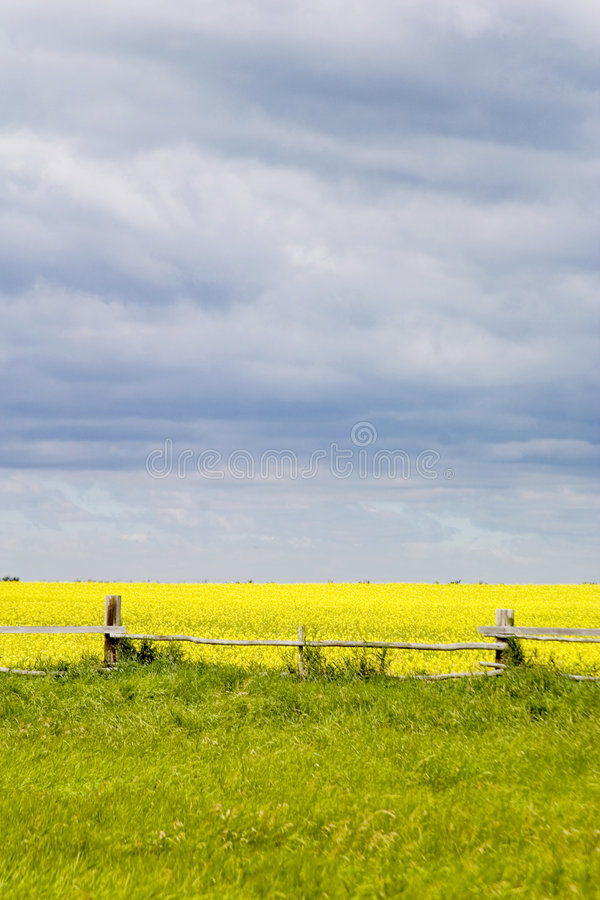 Prairie Landscape - Fence Line royalty free stock photography
