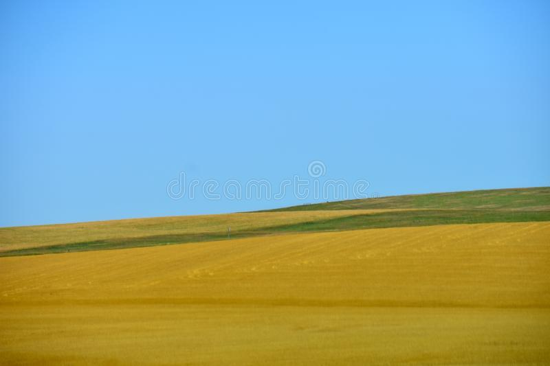 Prairie Landscape with yellow grasses and blue sky royalty free stock image