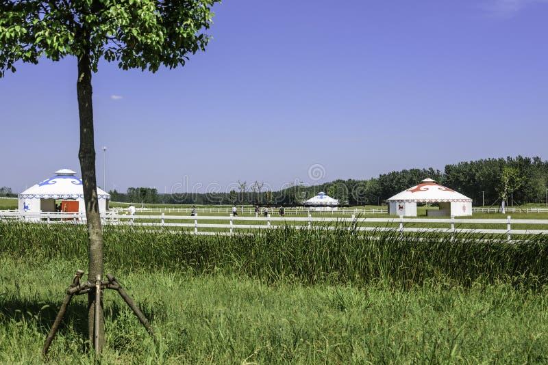 The prairie and mongolian yurt stock photography