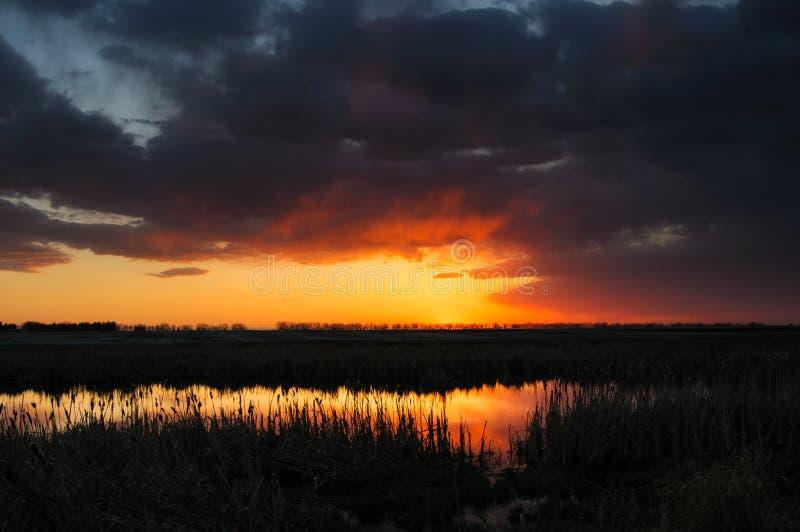 Download Prairie Sunset stock photo. Image of evening, prairie - 31258776