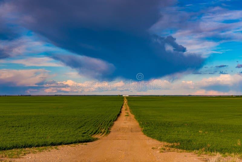 Prairielandschappen stock fotografie