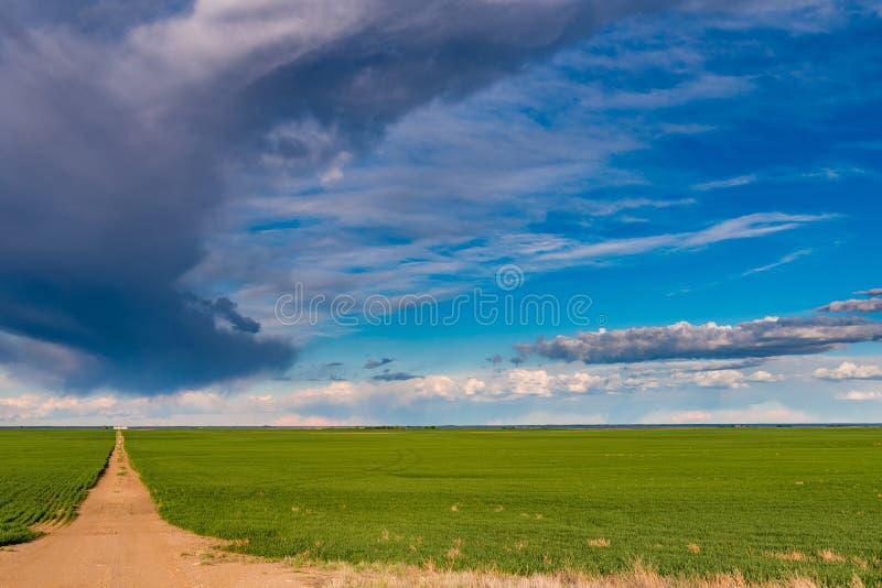 Prairielandschappen stock afbeeldingen