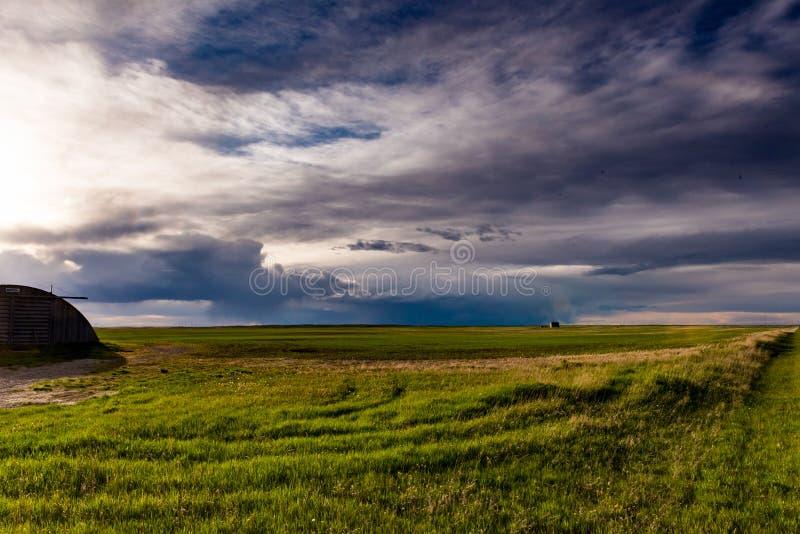 Prairielandschappen royalty-vrije stock afbeelding