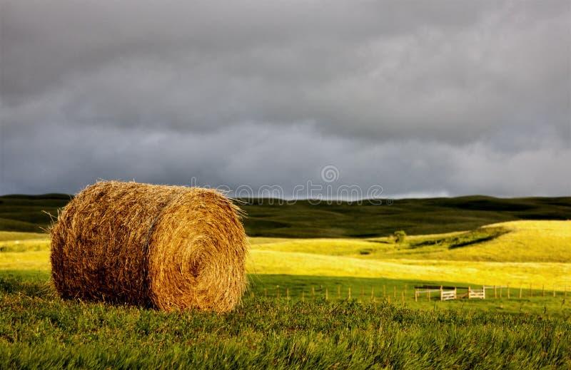 Prairieonweerswolken stock foto