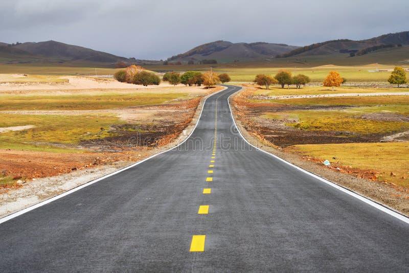 Prairies et route photo libre de droits