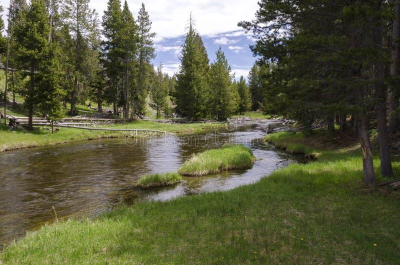 Prairies, lacs et rivières en parc national de Yellowstone photos libres de droits