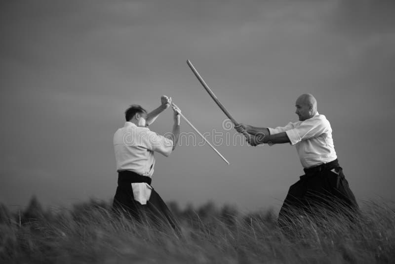 Praktiserande swordsmanship royaltyfria bilder