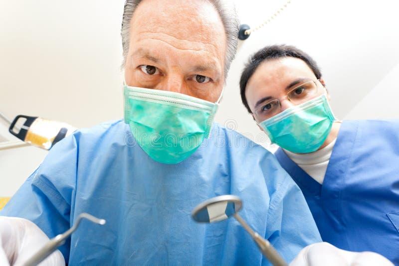 Praktizierende Zahnärzte stockbild