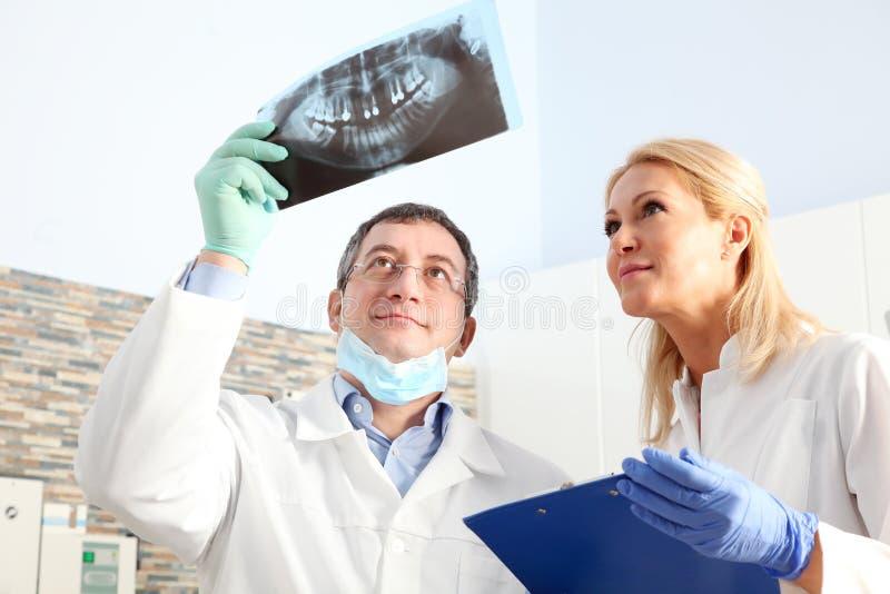 Praktizierende Zahnärzte stockbilder