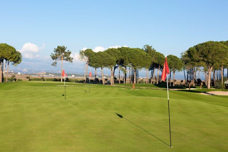 Praktyki pole przy polem golfowym zdjęcie royalty free