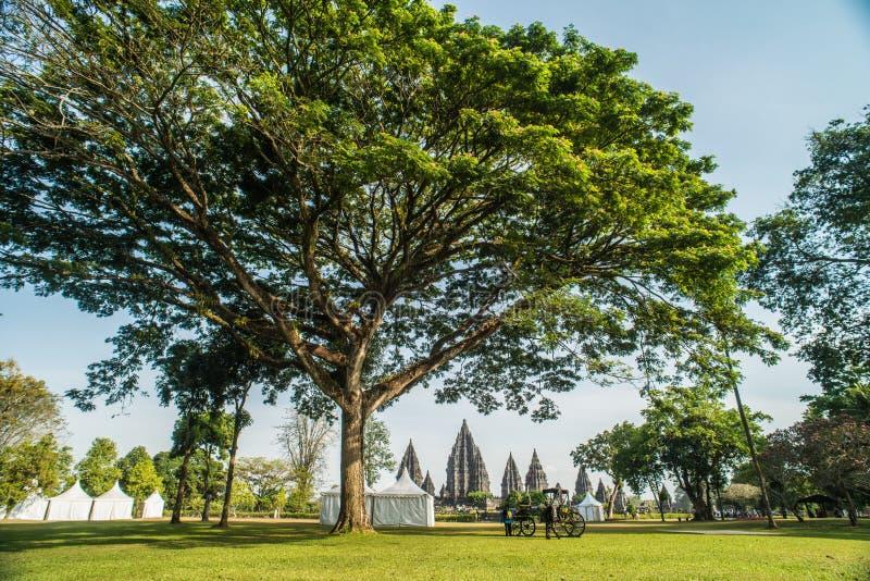 Prambanan или Candi Rara Jonggrang смесь индусского виска в Ява, Индонезии, предназначенной к Trimurti: создатель Brahma, стоковые изображения rf
