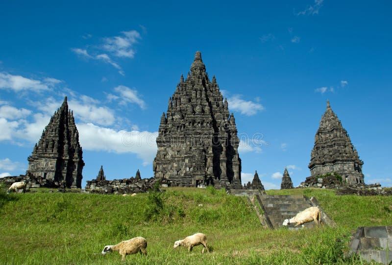 Prambanan Temple royalty free stock photo