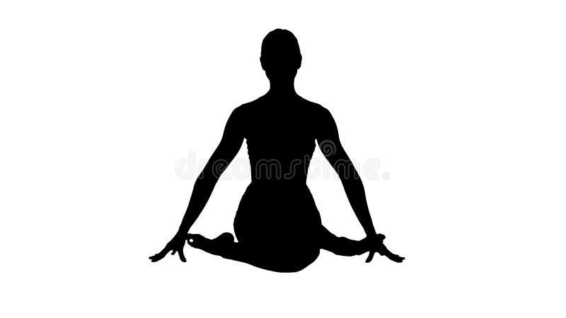 Pranayama ou Breathingin praticando do shodhana do nadi da menina da ioga da silhueta no asana do gomukhasana ou na pose principa ilustração stock