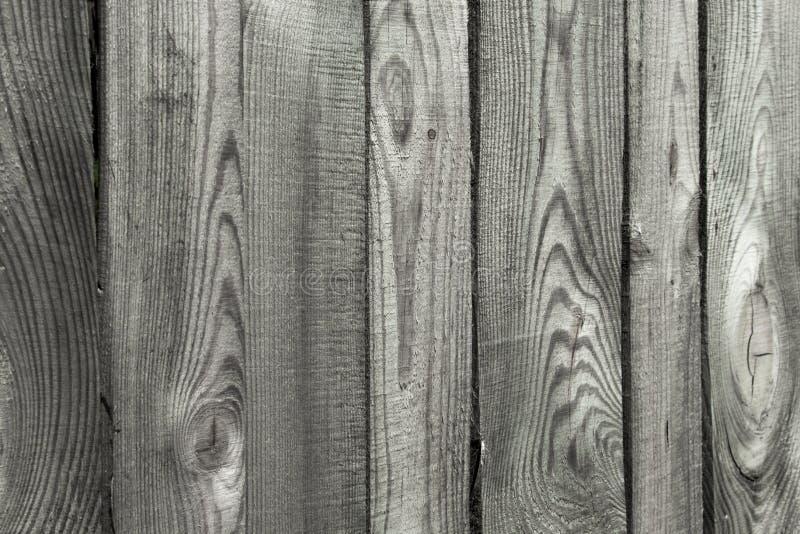 Prancha de madeira de alta resolu??o como a textura e o fundo fotografia de stock