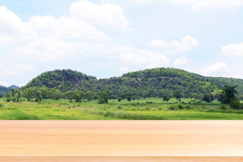 A prancha de madeira na serra borrada da montanha e no fundo macio da árvore de floresta, assoalhos de madeira vazios da tabela n fotos de stock