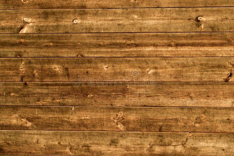 Prancha de madeira natural fotografia de stock