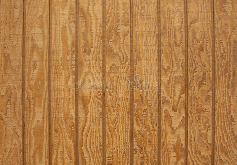 Prancha de madeira natural com textura foto de stock royalty free
