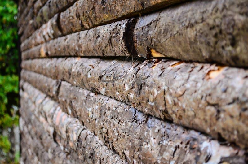 Pranchas de madeira sem emenda imagem de stock royalty free