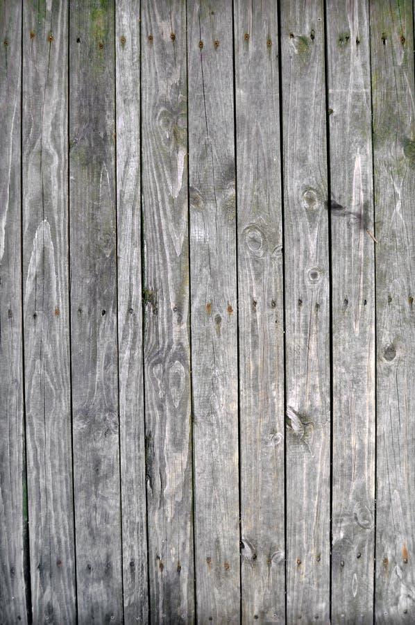 Pranchas de madeira velhas