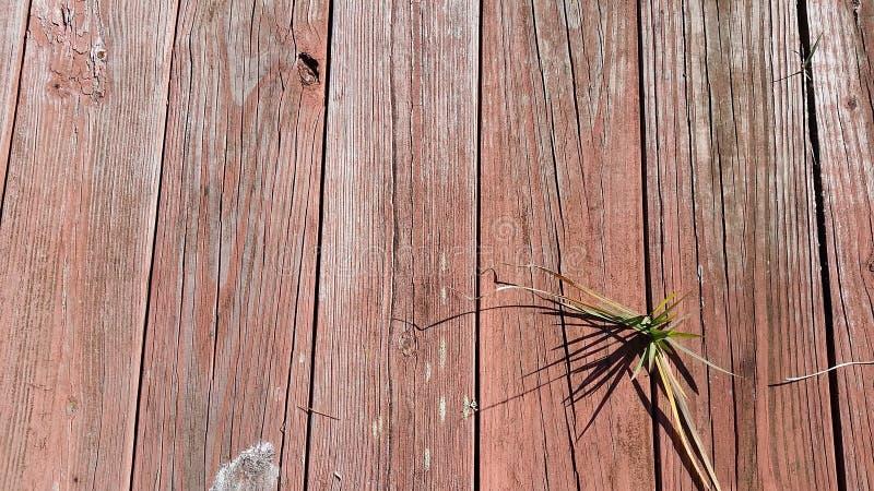 Pranchas de madeira vermelhas foto de stock