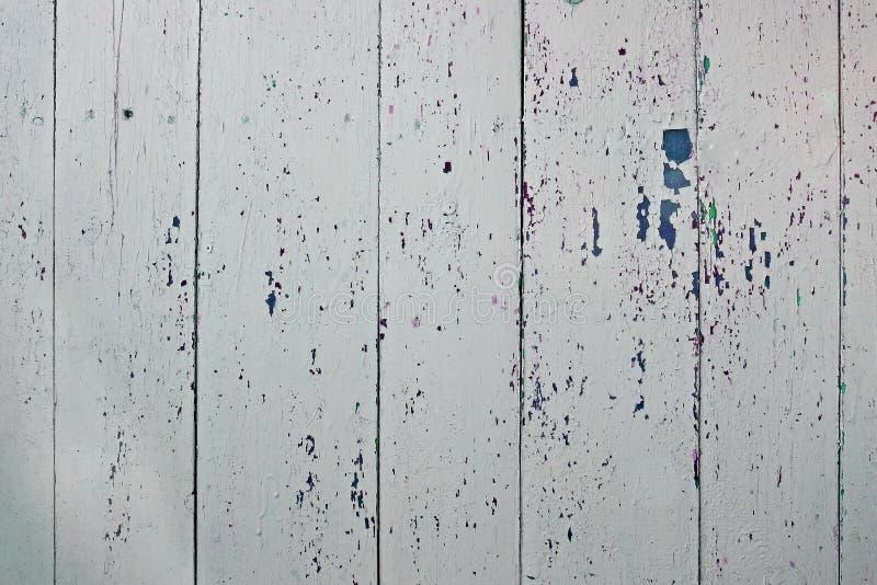 Pranchas e pintura de madeira desvanecidas velhas da casca Luz - fundo cinzento foto de stock royalty free
