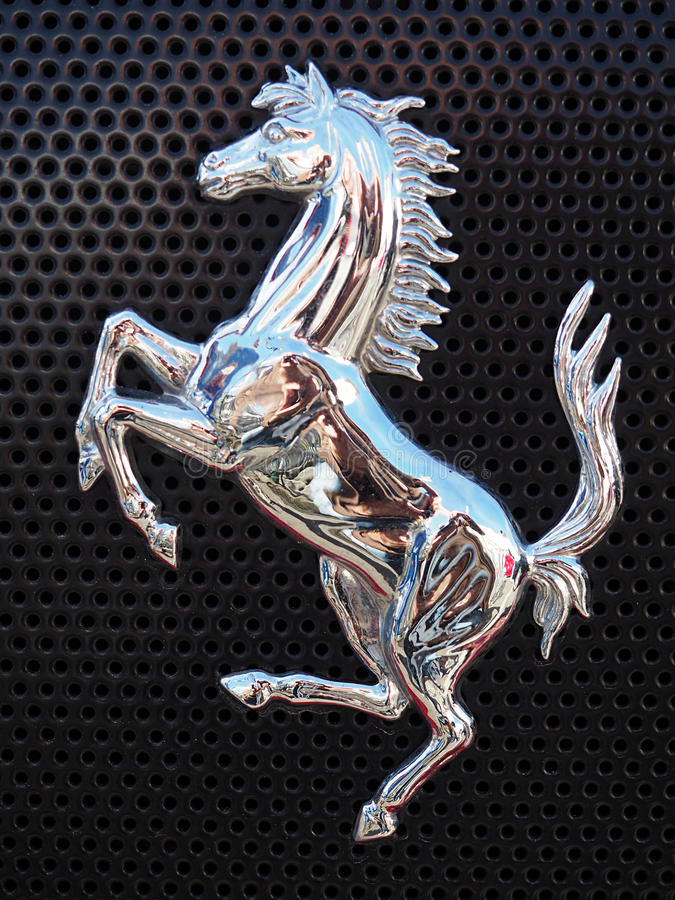 Prancing Horse royalty free stock images