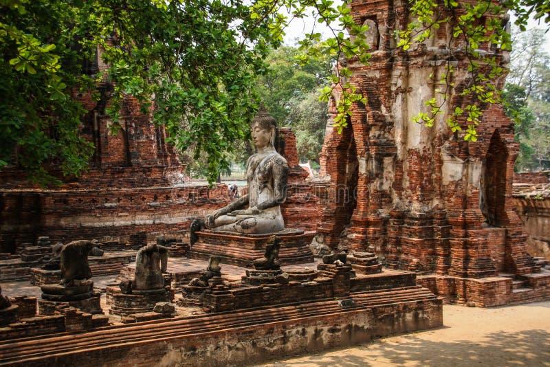 Prang en standbeeld van Boedha, Wat Mahathat-tempel, Ayutthaya, Chao Phraya Basin, Centraal Thailand, Thailand royalty-vrije stock fotografie