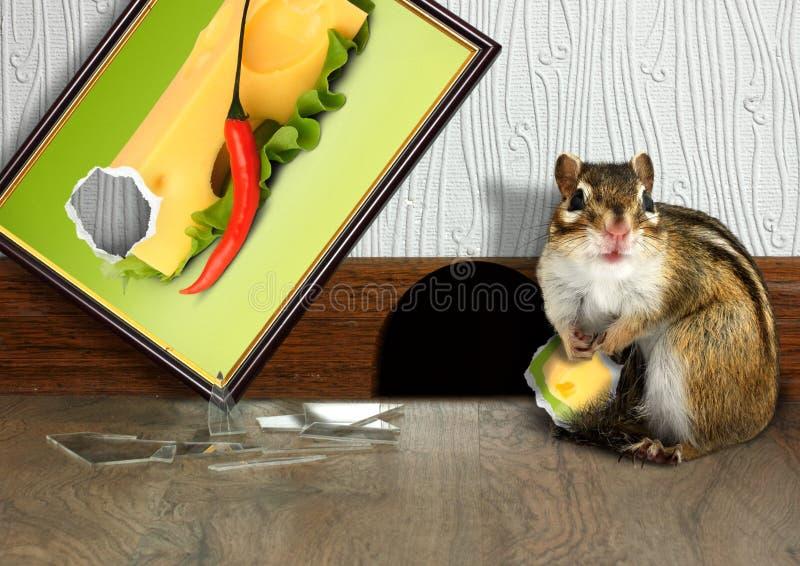 Download Prankish Chipmunk Broke Picture Stock Image - Image: 25916019
