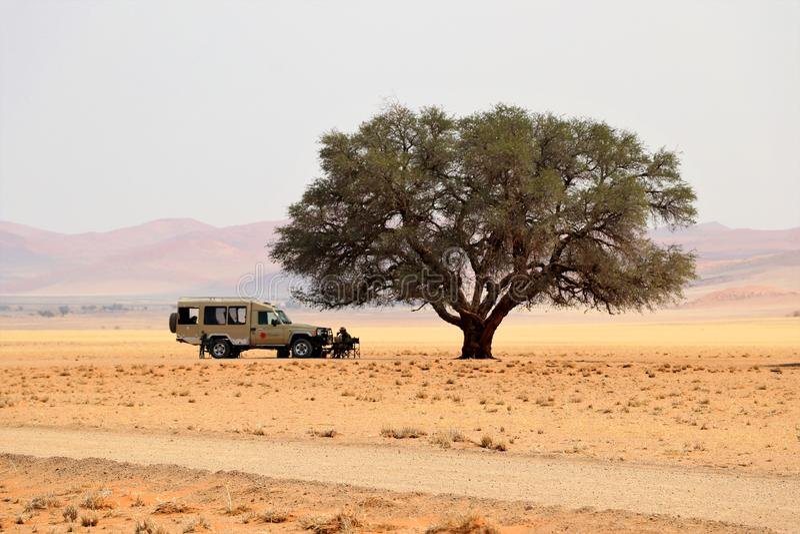 pranzo nel bello deserto Sossusvlei - Namibia Africa immagine stock libera da diritti