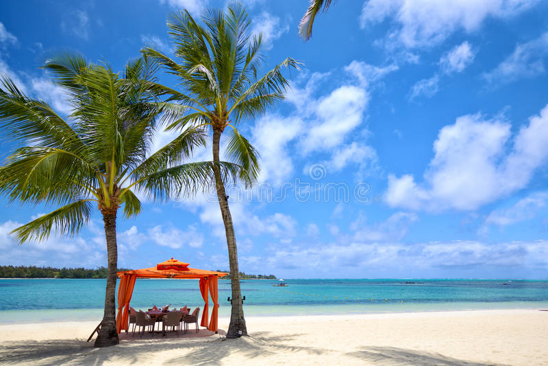 Pranzo tropicale immagine stock libera da diritti