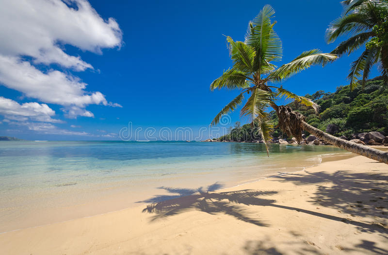 Praslin beach in the seychelles. A quiet secluded beach on the island of praslin in the seychelles stock photos