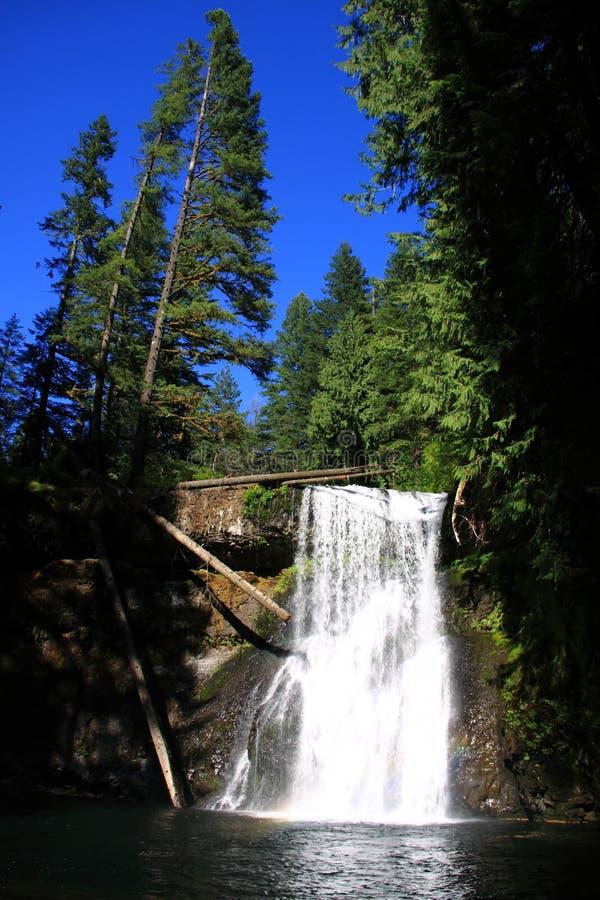 A prata cai parque estadual Oregon fotografia de stock royalty free