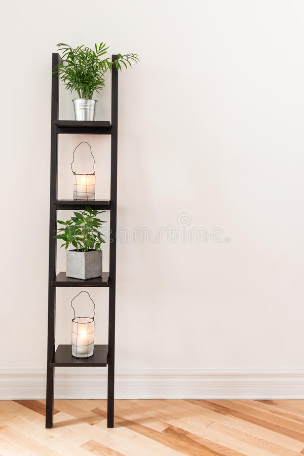 Prateleira com plantas e lanternas imagem de stock
