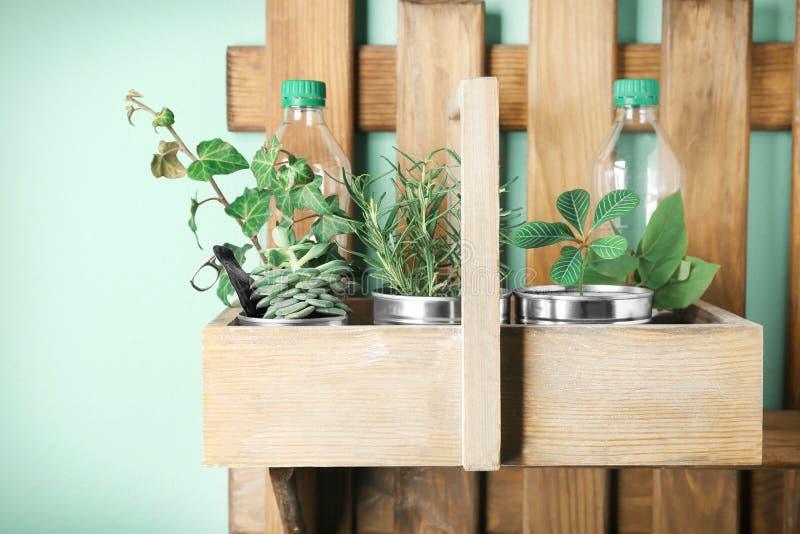 Prateleira de madeira com latas de alumínio e as garrafas plásticas usadas fotos de stock