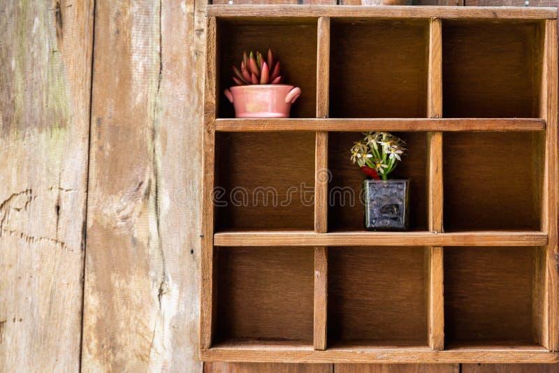 Prateleira de madeira de nove caixas com potenciômetros de flor imagem de stock royalty free