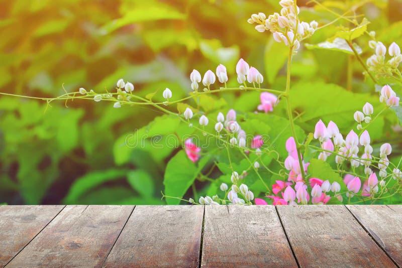 A prateleira de madeira vazia do assoalho da placa da textura com a flor no fundo da natureza com espaço da cópia adiciona o text foto de stock