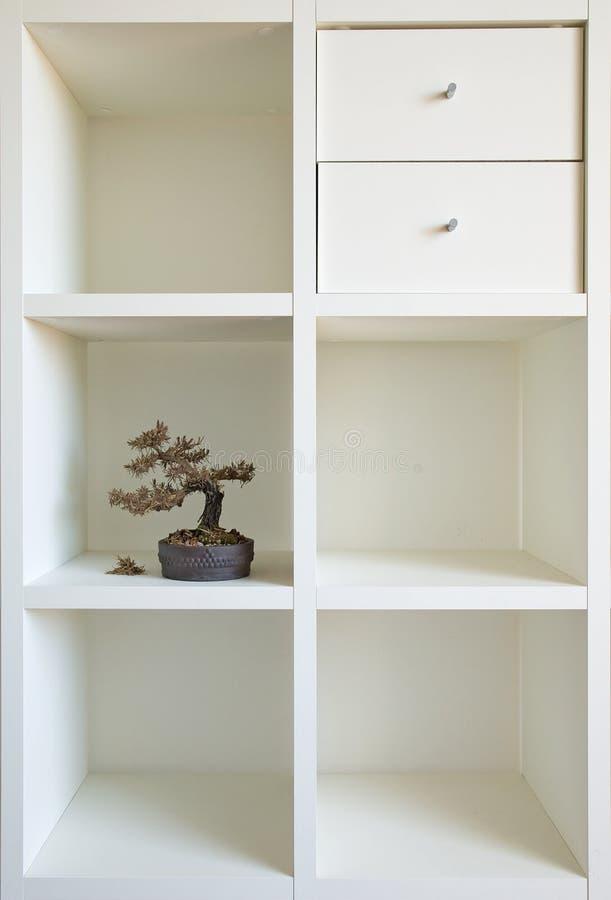 Prateleira dos bonsais mim imagens de stock