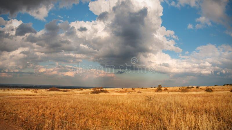 Prateria di autunno immagini stock libere da diritti