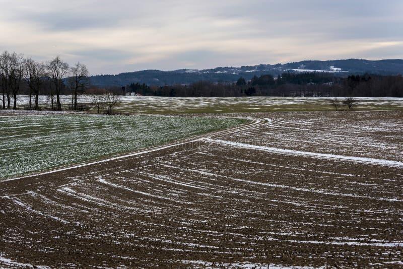 Prati congelati variopinti e campi con una poca neve immagine stock libera da diritti