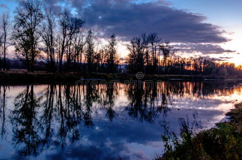 Prati del terreno alluvionale della zona della foresta-steppa fotografia stock libera da diritti