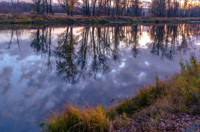 Prati del terreno alluvionale della zona della foresta-steppa fotografie stock libere da diritti