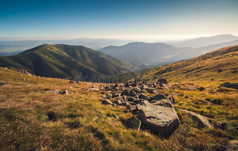 Prati e colline nel parco nazionale basso di Tatra, Slovacchia fotografia stock libera da diritti