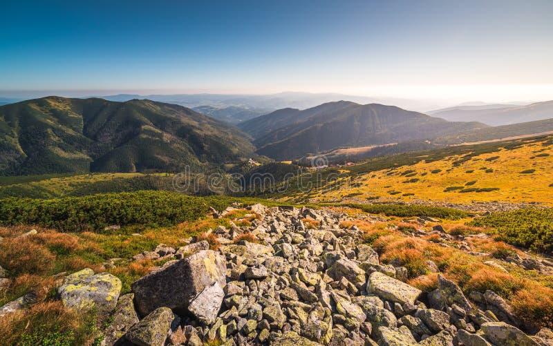 Prati e colline nel parco nazionale basso di Tatra, Slovacchia fotografie stock
