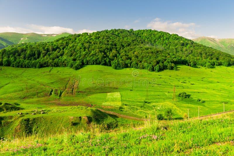 Prati e foreste verdi nelle montagne dell'Armenia immagini stock