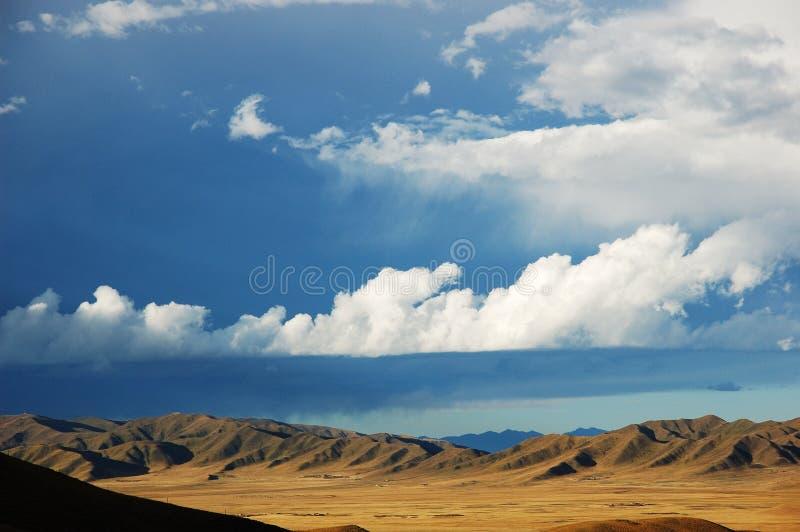 Prati nel Tibet fotografia stock